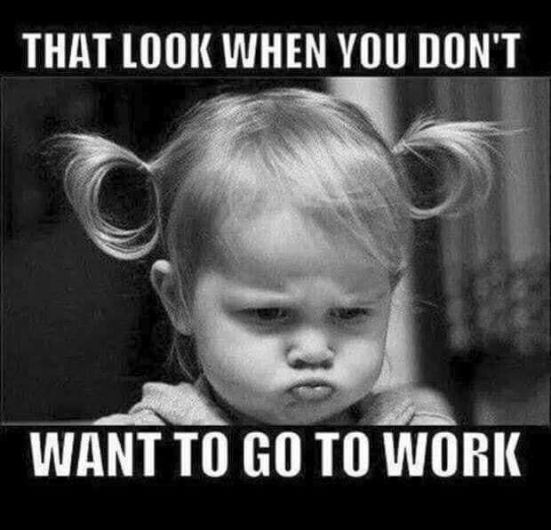 Like Monday Morning image