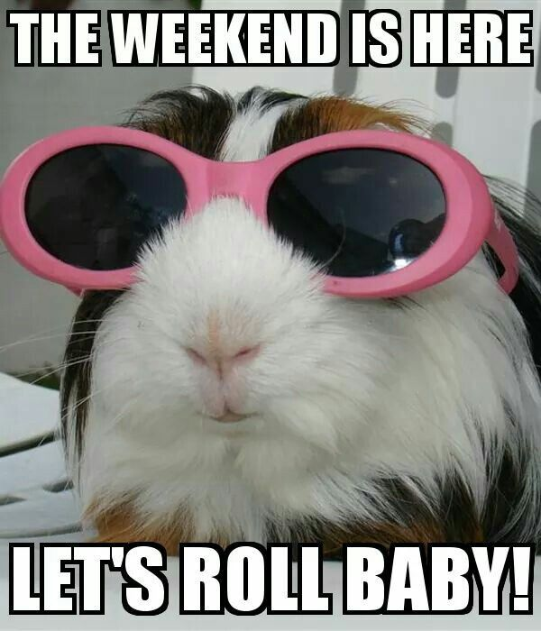 Here Is The Weekend