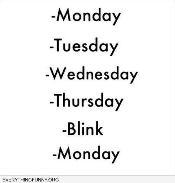 Blink Monday