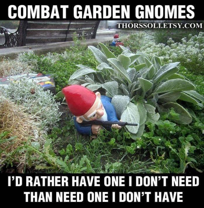 Combat Garden Gnomes