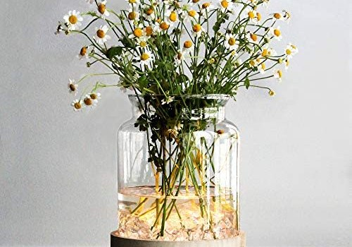 MJ PREMIER Table Glass Vase with LED Lights, Flower Clear Vase with Timing Function, Battery Operated Centerpieces Vase with Wood Tray for Home Decor/Indoor Green Plants/Fish Tank/Wedding/Party etc