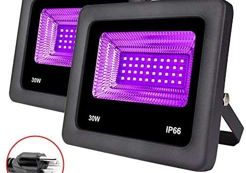 Remon 2 Pack 30W Black Light, LED Flood Light Outdoor Stage Light with Plug Perfect for Neon Glow, Blacklight Party, Stage Lighting, Fishing, Aquarium, DJ Disco