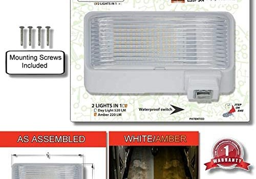 BUG-GUARD BG520W 12 Volt Functional Exterior RV Long-Life LED Flood Porch Light with Bright 220 Lumen (Amber)/520 Lunen (White), 2 Lights in one.