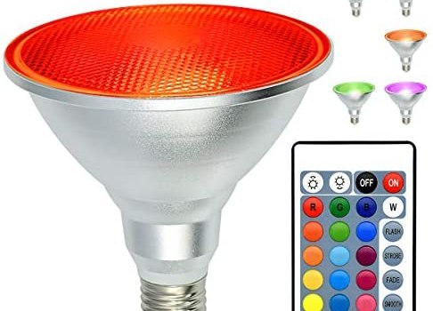 PAR38 LED Spotlight Screw, 30W E26 LED Flood Light, Kuniwa IP65 Waterproof Dimmable Color Changing Light Bulb with Remote Control for Indoor/Outdoor Home Room Party Decoration, RGB+Daylight(5000K)