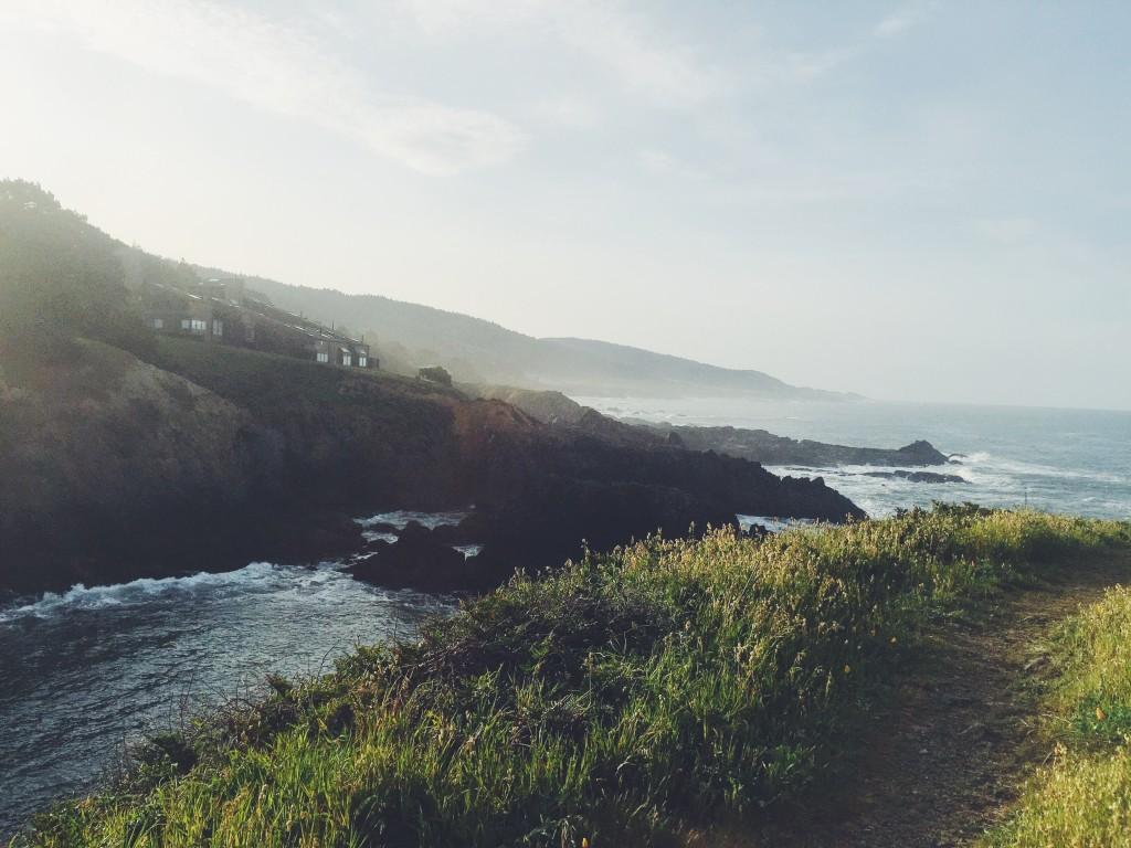 Morning at Sea Ranch