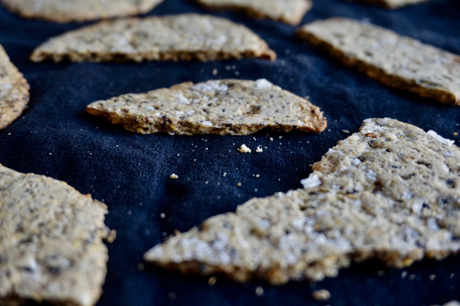 Sunflower black sesame seed crackers lentinealexis you dont need to have your own flour library to make crackers in fact you could absolutely substitute the flours i used here for any that you solutioingenieria Gallery