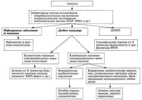 Алгоритм ведения беременных при инфекционном генезе невынашивания беременности mamaclub.ru