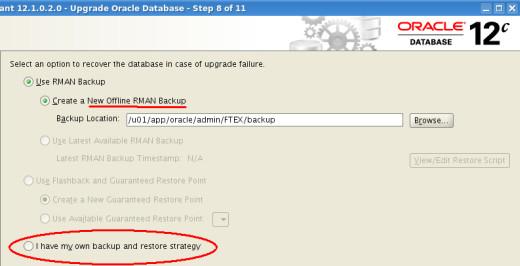 Backup Strategy DBUA