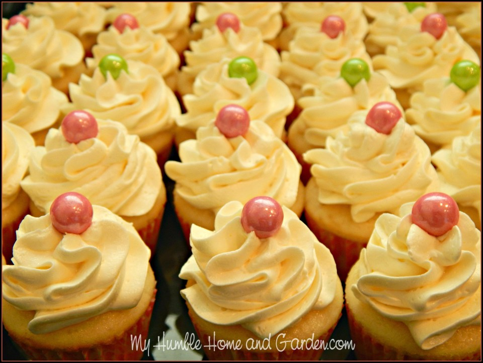 2 More Beautiful Quick And Easy Mini Cupcakes