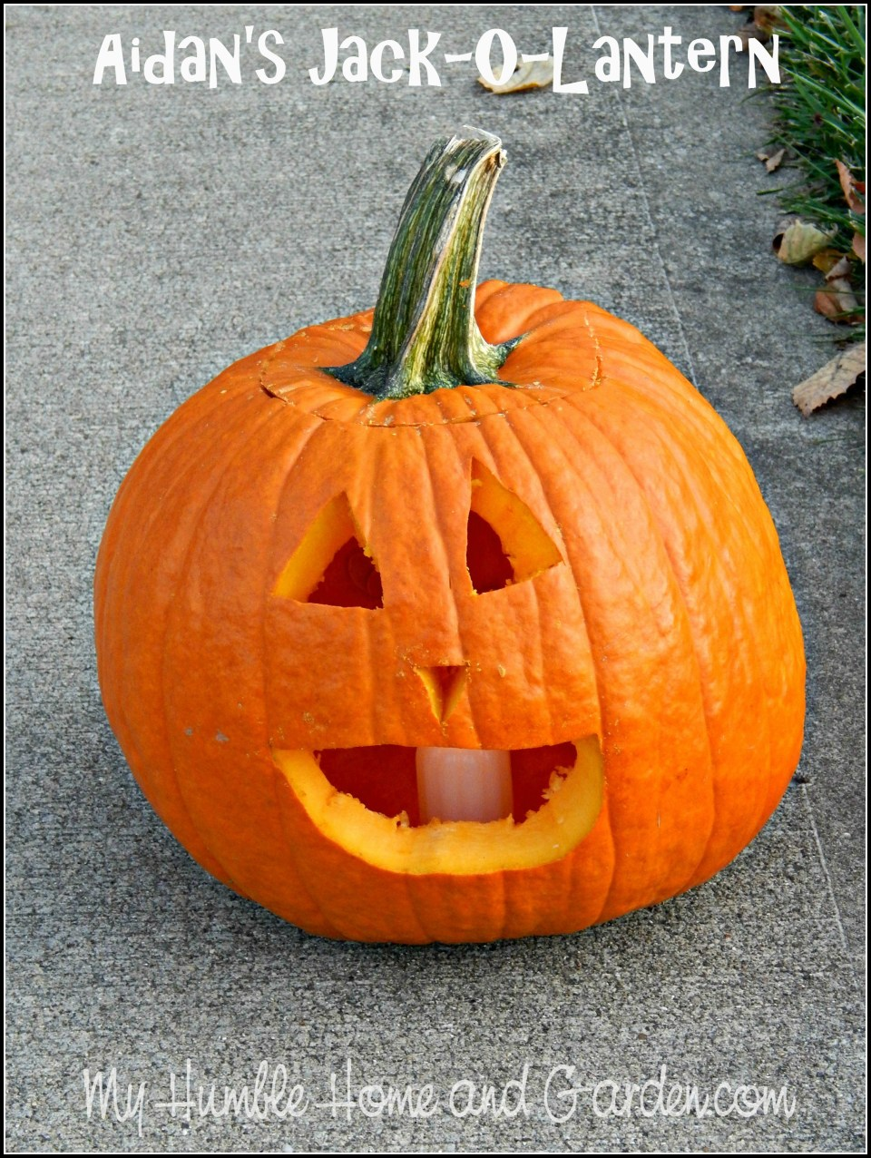 A Few Tips For A Great Halloween Night!