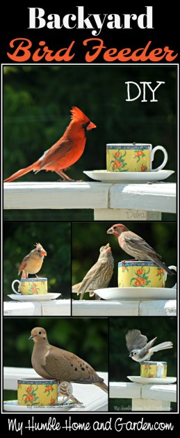 Backyard Bird Feeder DIY Teacup Bird Feeder on MyHumbleHomeandGarden.com