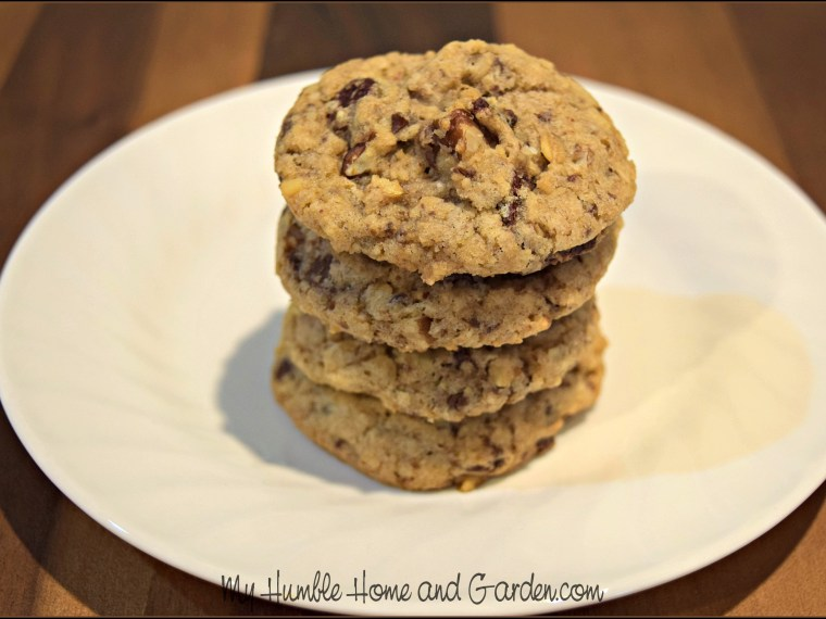 Delicious Oatmeal Chocolate Chip Cookies