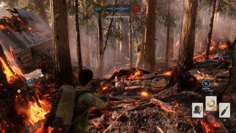 Scorched Endor Forests