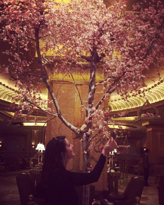 Blossom tree inside the lobby of the Emirates Palace
