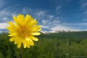 Proljetni običaji i vjerovanja