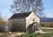 mlinic