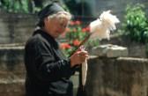 obrada vune kudilja