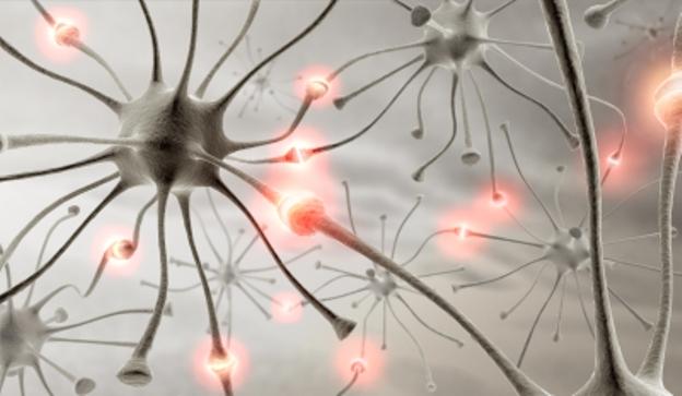Narodni ljek i čaj za padavicu ili epilepsiju