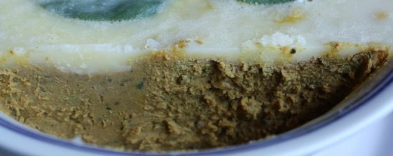 Faš od gušćih jetara sa majonezom i aspikom