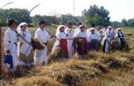 Tradicionalni Slavonski način života