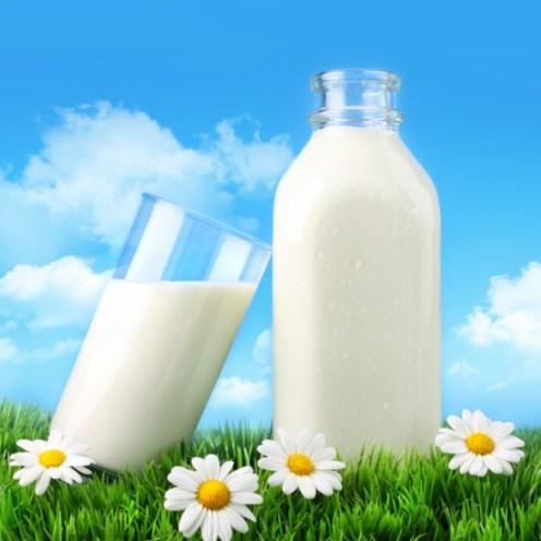 Ljekovita svojstva mlijeka i mlijeko kao ljek