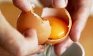Ljekovitost jaja, ljekovita upotreba jaja