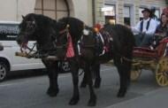 Ponos i tradicija Slavonije naše su trajno nadahnuće