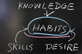 habits knowledge rituals routine