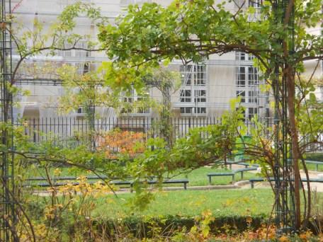 St. Gilles Garden 6