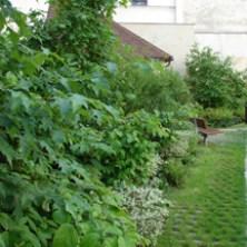 Anne Frank Garden-8