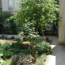 Anne Frank Garden-9