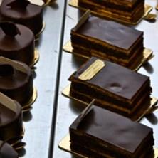 Chocolate Dessert, Constant