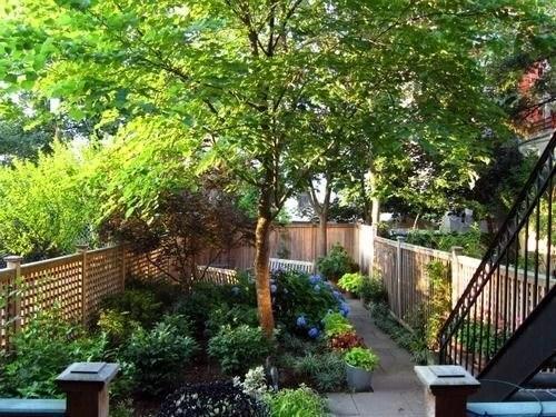 Backyard_with_stairs.jpg