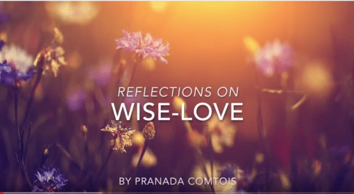 Wise-Love Book Trailer