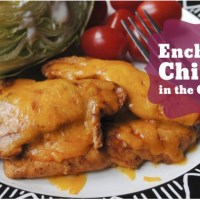 Enchilada Chicken in the Crock Pot
