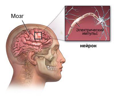 Эпилепсияны қалай емдеуге болады