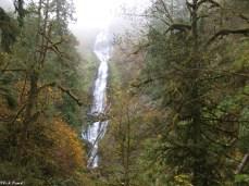 Munson Falls, Tillamook Oregon