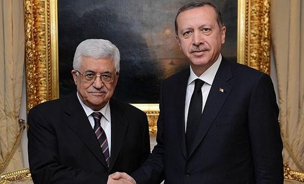 abas erdogan