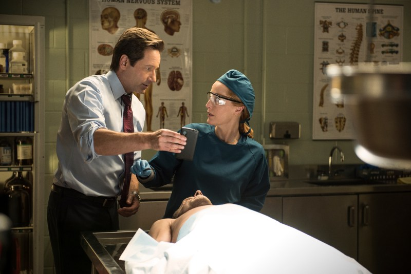 She's a doctor, not a monster hunter. (Ed Araquel/FOX)