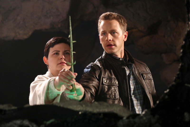 The royal couple is protected by an infant tree. (ABC/Jack Rowand) GINNIFER GOODWIN, JOSH DALLAS