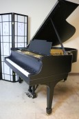 Steinway Model M Ebony Black Gloss 1923 Rebuilt & Refinished New Renner Action $19,500