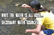 When the water is all gone: Secondary water sources