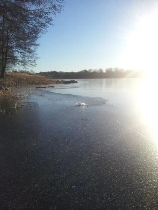 -8 grados en el lago Åsnen - 3