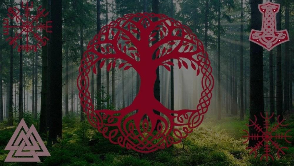 Los vikingos,  3 importantes razones 🤔 para reescribir su historia 📝 😏
