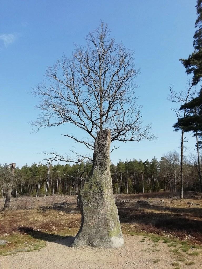 Svea y Pablo - El menhir sueco de Björketorpsstenen