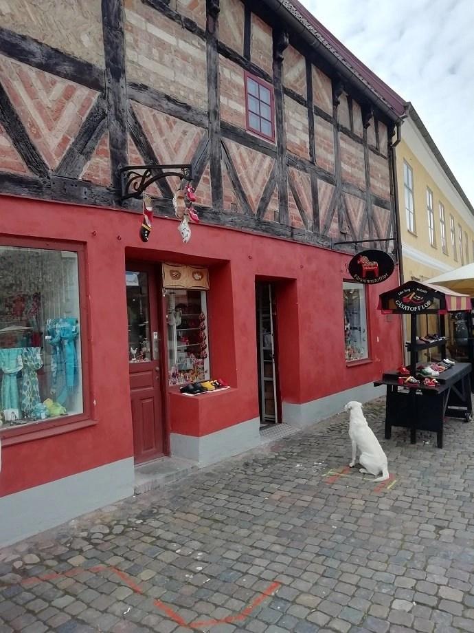 Svea y Pablo - Una de las tiendas en Lilla torg