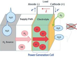 Construction of Hydrogen Fuel Cell