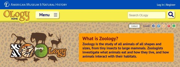 Ology is the American Museum of Natural History's children's site, Explore the study of Zoology