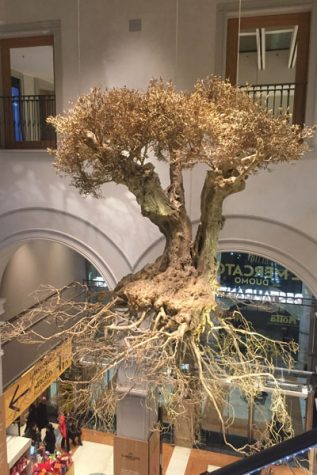 Housed in a quaint restaurant in Milan, a golden tree hangs from the ceiling.