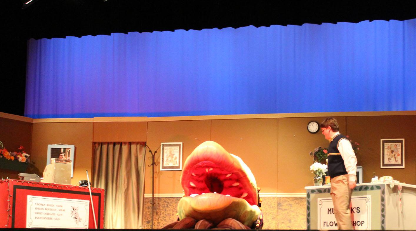 Drew Davison stars as Seymour alongside the iconic plant, Audrey II.